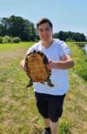 Schildkröten in der Hunte oberhalb